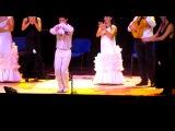 Театр танца Фламенко. Испания.