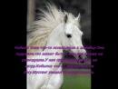 про лошадей(не судите строго это первый клип)